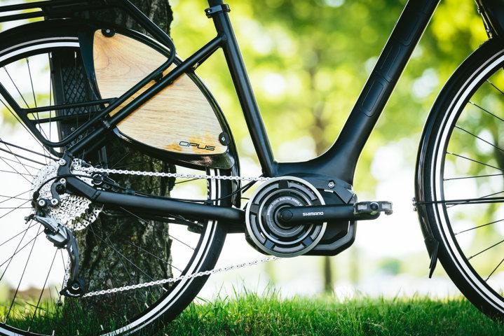 Great fun with an E-Bike (Electric Bicycle)