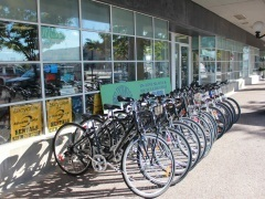 Bike Rental Rates